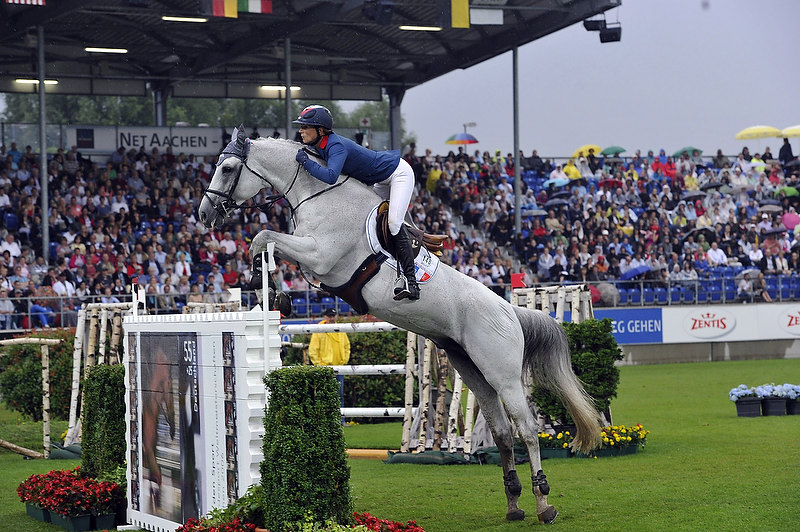 FABULOUS FRENCH FLY TO VICTORY