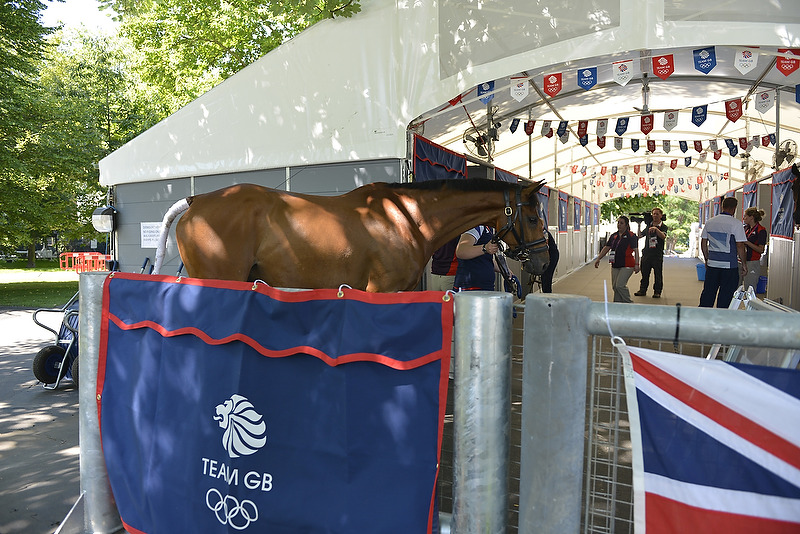 First Olympic horses arrive at Greenwich Park
