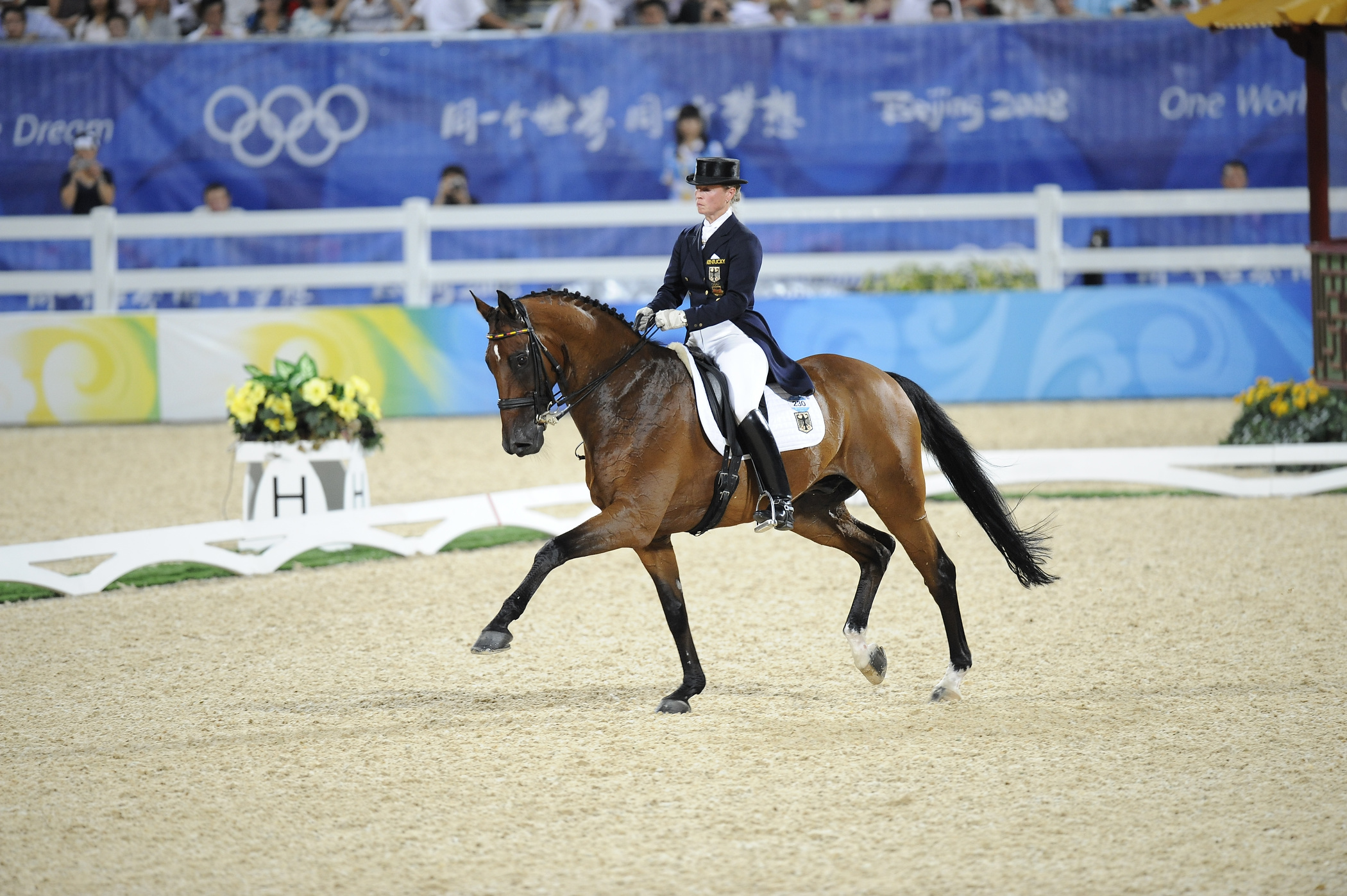 Entries for Olympic equestrian events unveiled